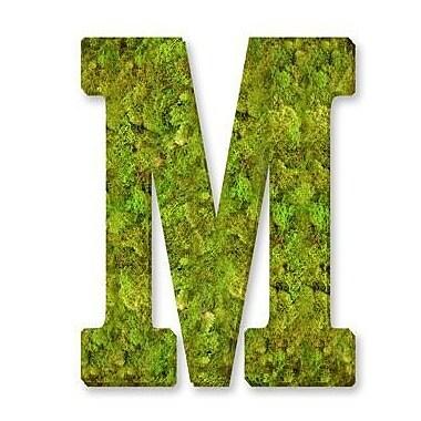 August Grove Basic Monogram Letter 12'' Moss Wreath; M