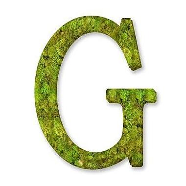 August Grove Basic Monogram Letter 12'' Moss Wreath; G