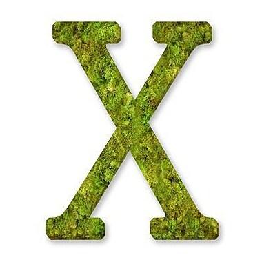 August Grove Basic Monogram Letter 12'' Moss Wreath; X