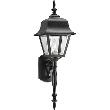 Alcott Hill Cranbrook 1-Light Outdoor Sconce; Black