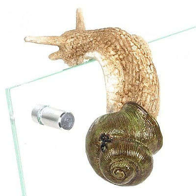 August Grove Caiden Polyresin Snail Figurine