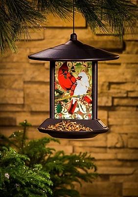 Evergreen Enterprises, Inc Cardinal Family Decorative Tray Bird Feeder (WYF078279894958) photo