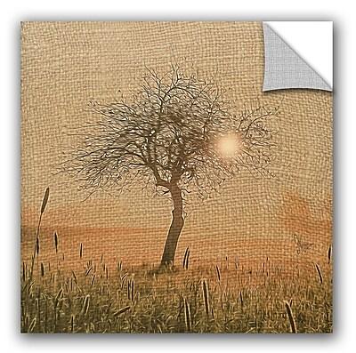 ArtWall Scott Medwetz Pale Sunrise Wall Decal; 12'' H x 18'' W x 0.1'' D