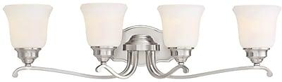 Darby Home Co Audane 4-Light Vanity Light