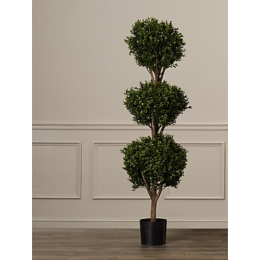 Darby Home Co Ball Boxwood Top Topiary in Pot; 60'' H