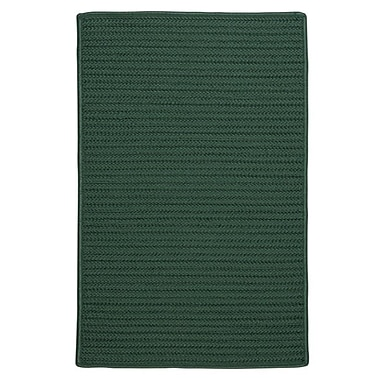 Charlton Home Glasgow Green Indoor/Outdoor Area Rug; Square 12'