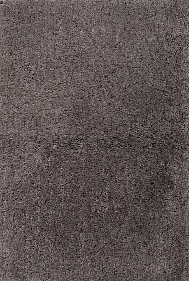 Charlton Home Thompsonville Gray Solid Rug; 5' x 8'