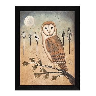TrendyDecor4U Barn Owl -12