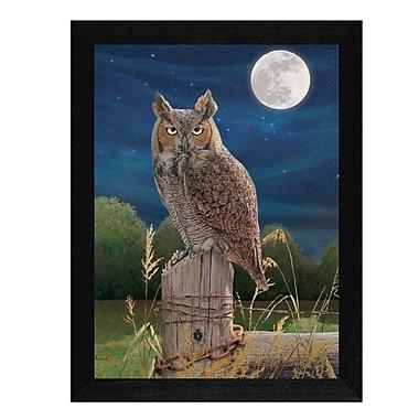 TrendyDecor4U Night Owl -12