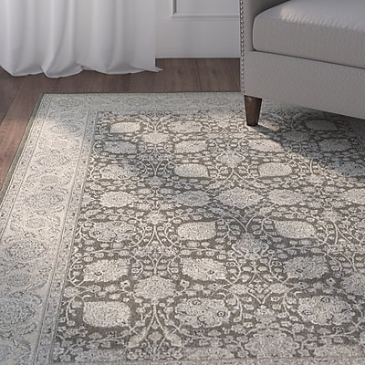 Charlton Home Cynthiana Brown/Ivory Area Rug; Rectangle 3'10'' x 5'5''