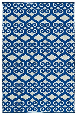 Charlton Home Covington Navy/White Indoor/Outdoor Area Rug; Runner 2' x 6'