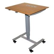 Fr sch Sit Stand Electric Portable Presentation Standing Desk; Silver