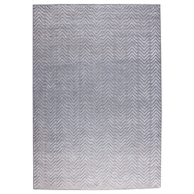 M.A. Trading Chandler Hand-Woven Silver Area Rug; 8' x 10'