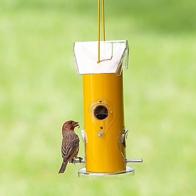 Perky Pet Metal Tube Wild Bird Feeder (WYF078280161028) photo
