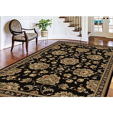 Astoria Grand Clarence Black/Gold Area Rug; Round 5'3''