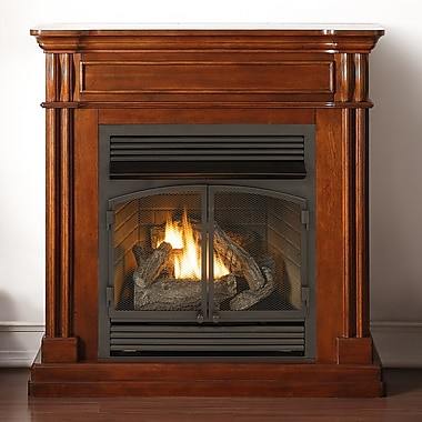 Duluth Forge Autumn Spice Dual Fuel Ventless Natural Gas/Propane Fireplace