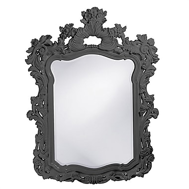 Astoria Grand Feathery Scrolling Resin Mirror; Charcoal Gray
