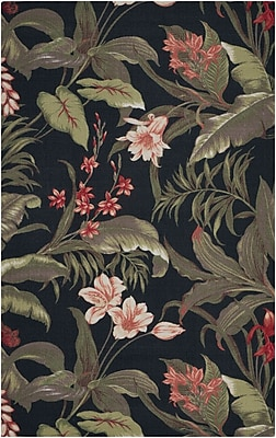 Bay Isle Home Acheritou Black Indoor/Outdoor Area Rug; 4'4'' x 6'11''