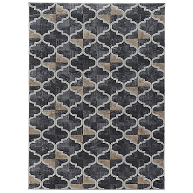 Charlton Home Norwich Gray Area Rug; Rectangle 5'3'' x 7'3''