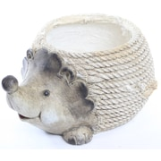Alpine Hedgehog Rope Resin Planter