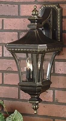 Astoria Grand Falnaglass 2-Light Outdoor Wall Lantern