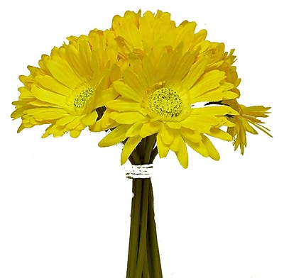 August Grove Tall Gerbera Daisy Bouquet; Yellow