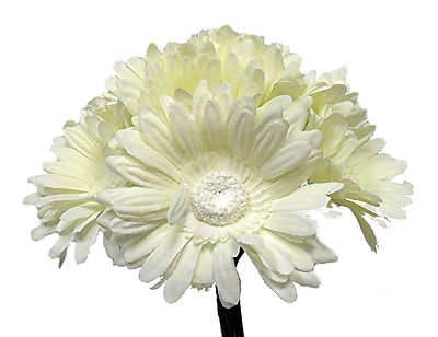 August Grove Tall Gerbera Daisy Bouquet; Cream