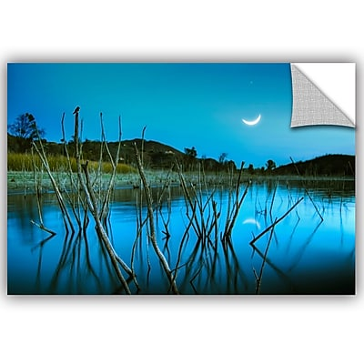 ArtWall Lee Lsie The Blue Lake Wall Decal; 32'' H x 48'' W x 0.1'' D