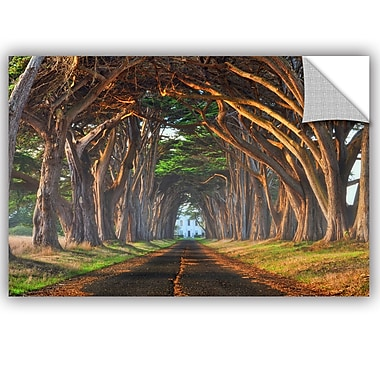 ArtWall Lee Lsie Tunnel of Light Wall Decal; 12'' H x 18'' W x 0.1'' D