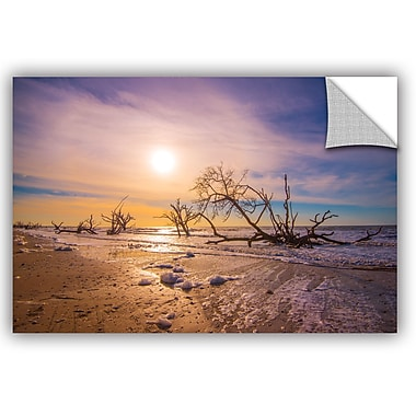ArtWall Steve Ainsworth Sunrise over Botany Bay Wall Decal; 24'' H x 36'' W x 0.1'' D