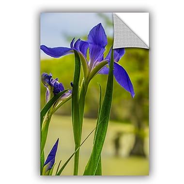 ArtWall Steve Ainsworth Purple Iris Wall Decal; 36'' H x 24'' W x 0.1'' D