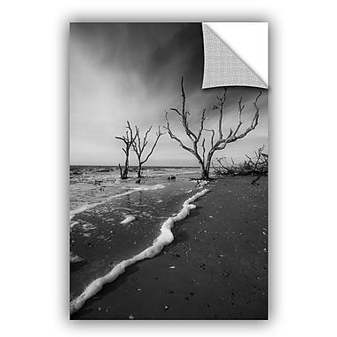 ArtWall Steve Ainsworth Boneyard Beach I Wall Decal; 18'' H x 14'' W x 0.1'' D