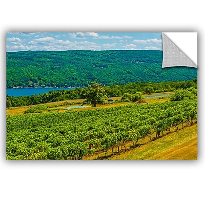 ArtWall Steve Ainsworth Lakeside Vineyard I Wall Decal; 24'' H x 36'' W x 0.1'' D