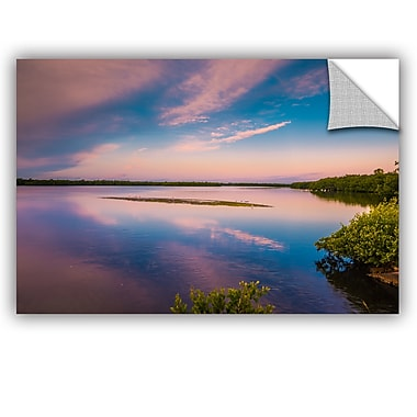 ArtWall Steve Ainsworth Marsh at Sunrise Wall Decal; 24'' H x 36'' W x 0.1'' D