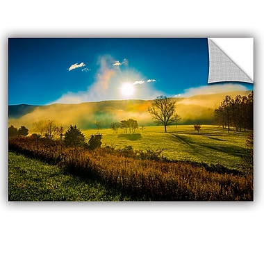 ArtWall Steve Ainsworth Mist Rising Wall Decal; 32'' H x 48'' W x 0.1'' D
