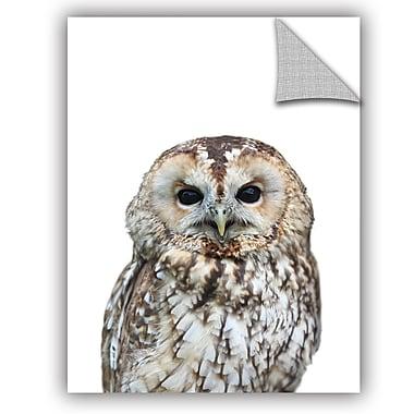 ArtWall Lexie Greer Owl Wall Decal; 48'' H x 36'' W x 0.1'' D