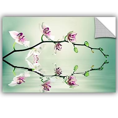 ArtWall Lee Lsie Zen Wall Decal; 8'' H x 12'' W x 0.1'' D