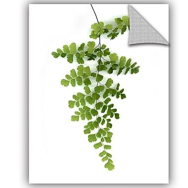 ArtWall Lexie Greer Green Maidenhair Wall Decal; 10'' H x 8'' W x 0.1'' D