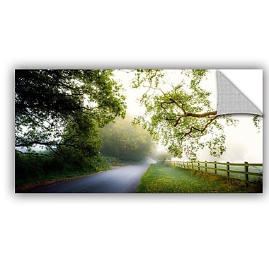 ArtWall Adelino Gon Alves Octobers Fog Wall Decal; 16'' H x 24'' W x 0.1'' D