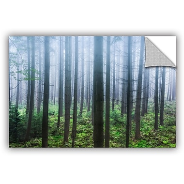 ArtWall Hans Logren Misty Pines Wall Decal; 12'' H x 18'' W x 0.1'' D
