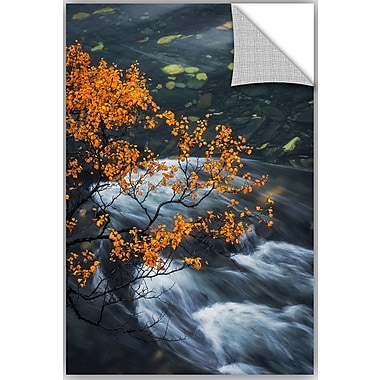 ArtWall Hans Logren Abisko Autumn Birch Wall Decal; 48'' H x 32'' W x 0.1'' D