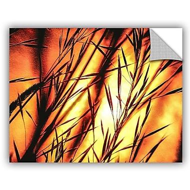 ArtWall Scott Medwetz Sienna Sunrise Wall Decal; 14'' H x 18'' W x 0.1'' D