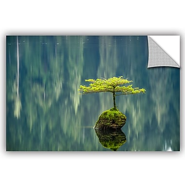 ArtWall Tim Oldford Fairy Lake Sunset Wall Decal; 12'' H x 18'' W x 0.1'' D