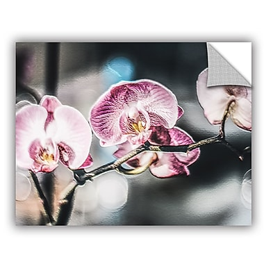 ArtWall Scott Medwetz Pink Flare Flowers Wall Decal; 36'' H x 48'' W x 0.1'' D