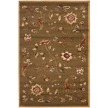 Astoria Grand Taufner Brown Area Rug; Rectangle 3'3'' x 5'3''