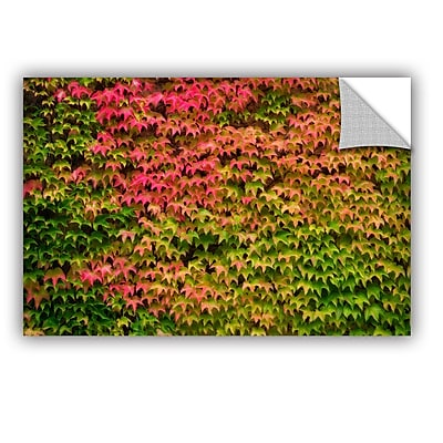 August Grove Vines Wall 1 Wall Decal; 16'' H x 24'' W x 0.1'' D