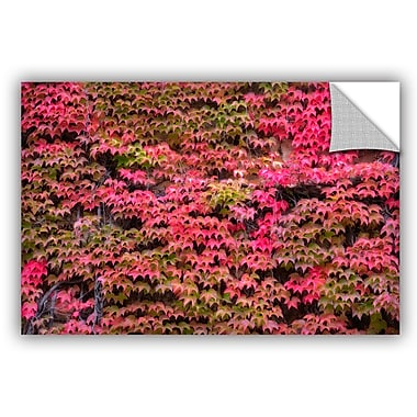 August Grove Vines Wall 2 Wall Decal; 16'' H x 24'' W x 0.1'' D