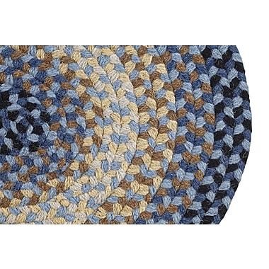 August Grove Monnie Braided Blue Area Rug; Rectangle 2'3'' x 4'