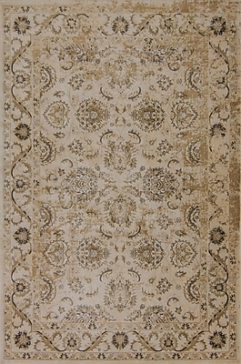 Astoria Grand Bailor Ivory/Gold Area Rug; Rectangle 5'3'' x 7'7''
