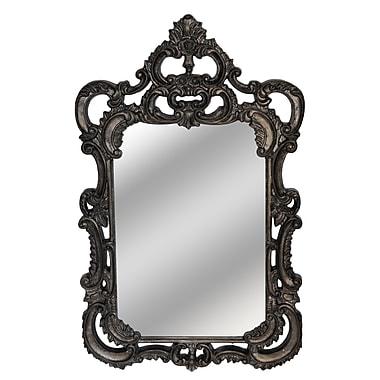 Astoria Grand Rectangle Gray Mirror